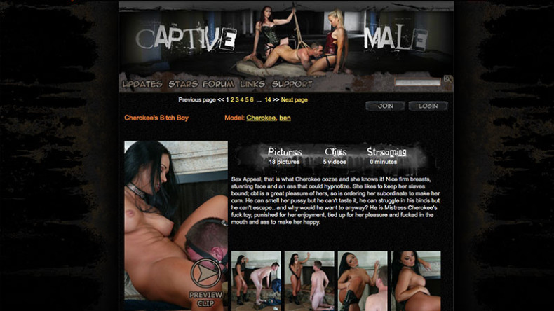 CaptiveMale_Homepage_screenshoot